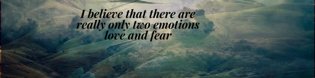 I-believe-that-there-are-really-only-two-emotions-love-and-fear