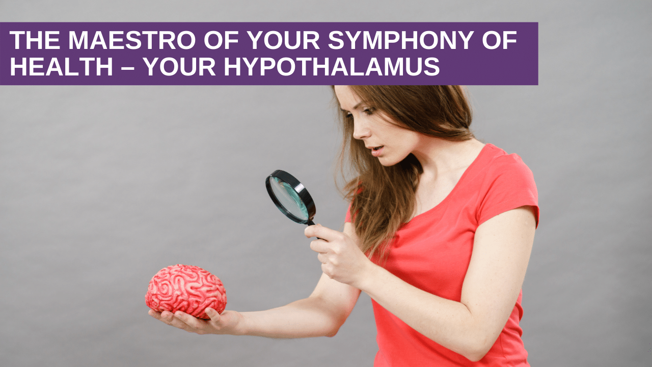 The Maestro of your Symphony of Health - Your Hypothalamus