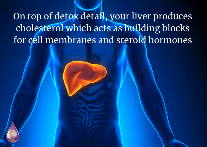 on top of detox detail, your liver produces cholesterol which acts as building blocks for cell membranes and steroid hormones