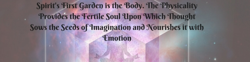 Spirits-first-garden-is-the-body.-The-physicality-provides-the-fertile-soul-upon-which-thought-sows-the-seeds-of-imagination-and-nourishes-it-with-emotion