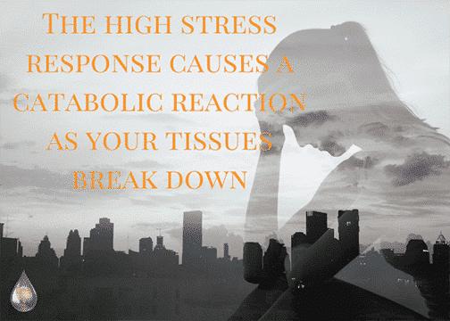 high stress response