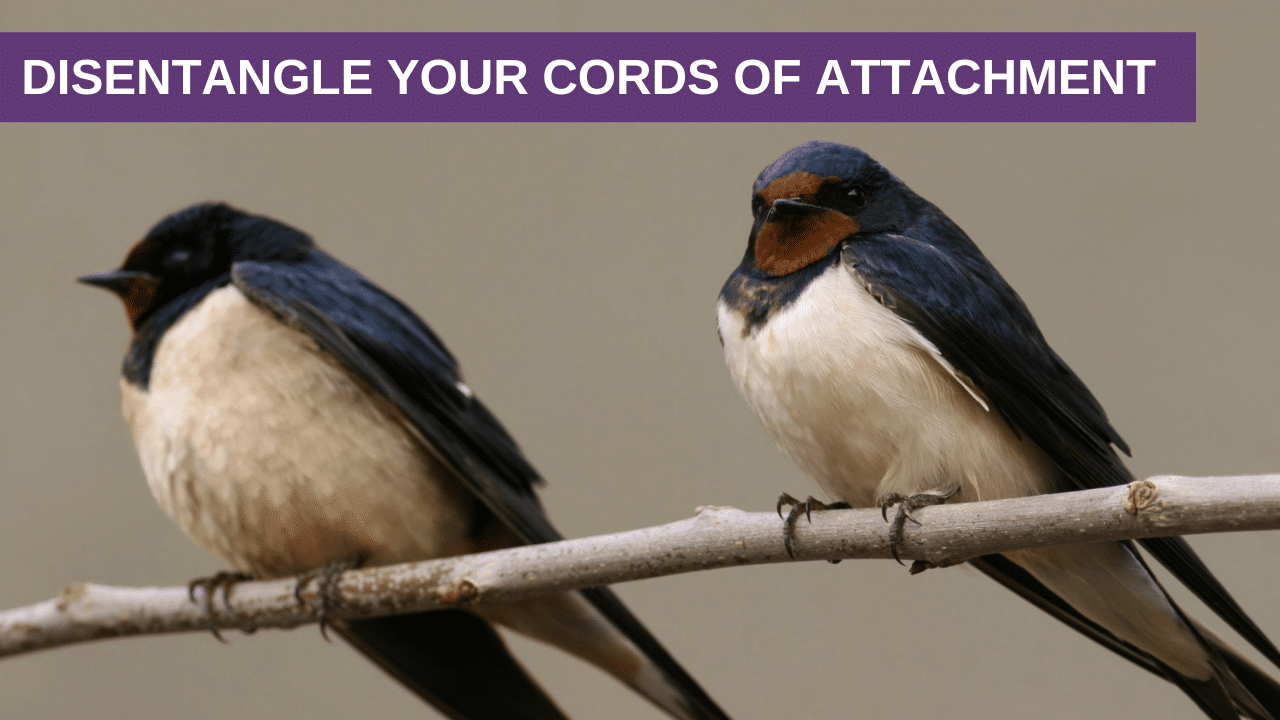 Disentangle Your Cords of Attachment