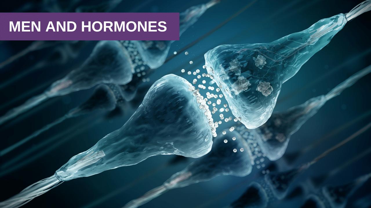 Men and Hormones