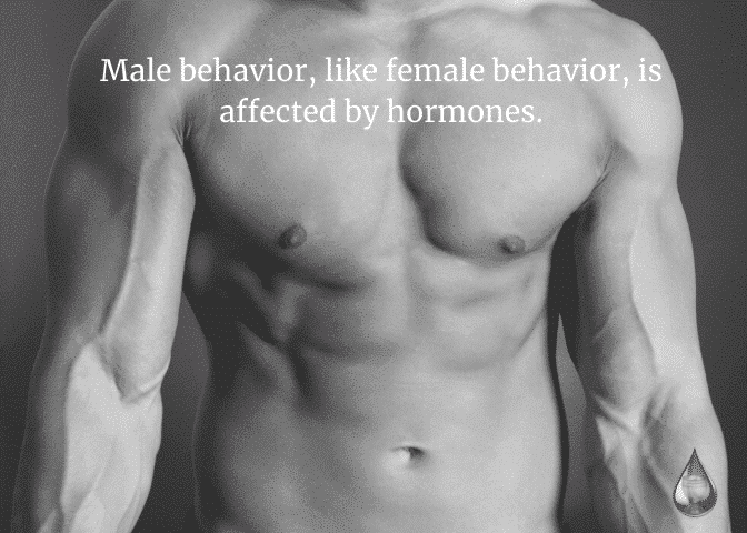 Men and Hormones