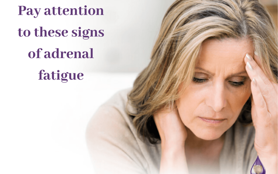 Adrenal Fatigue Symptoms | What You Need to Know!