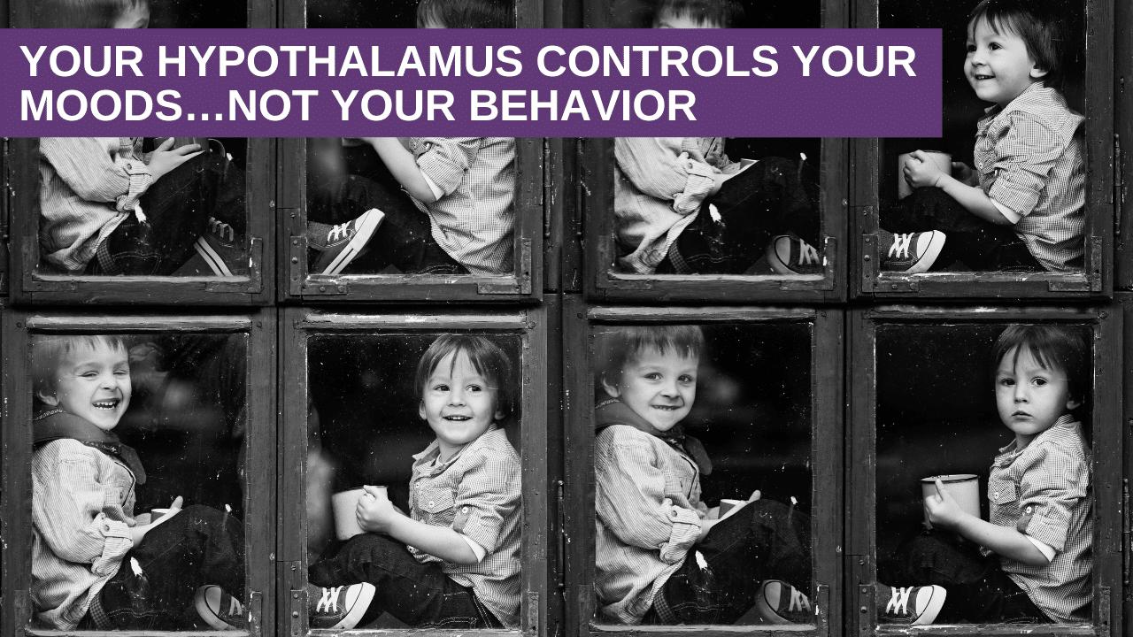 Your Hypothalamus Controls Your Moods…Not Your Behavior
