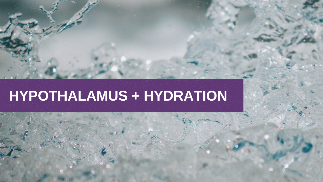 Hypothalamus + Hydration