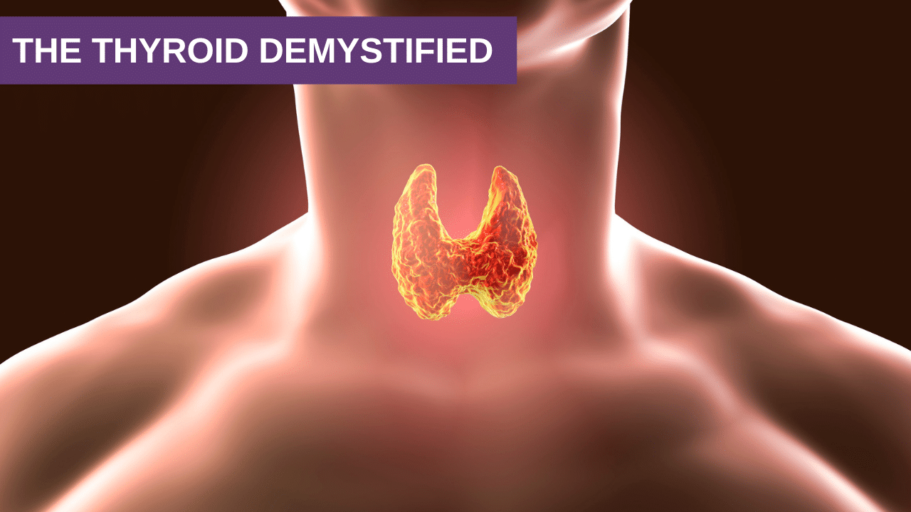 The Thyroid Demystified