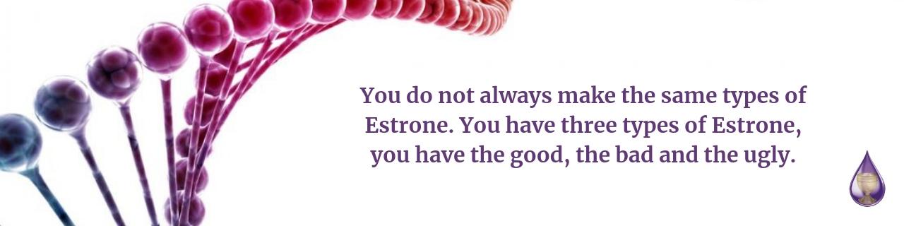 estradiol and estrone hormones