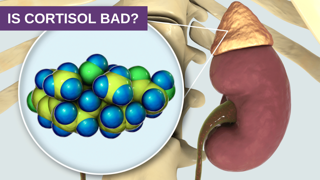 Is Cortisol Bad?