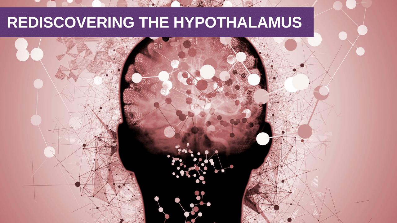 Rediscovering the Hypothalamus