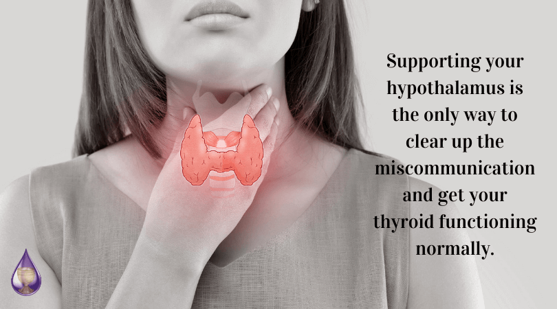 support your hypothalamus to clear the miscommunication and get your thyroid working normally