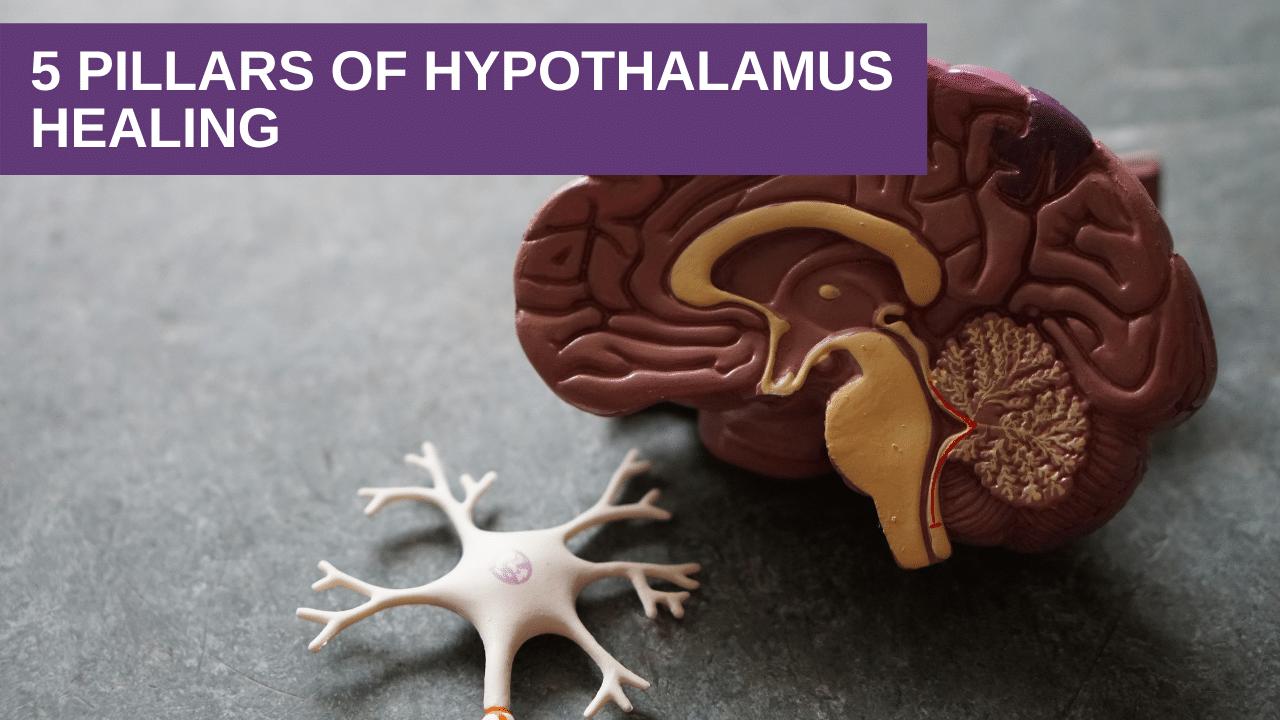 5 Pillars of Hypothalamus Healing
