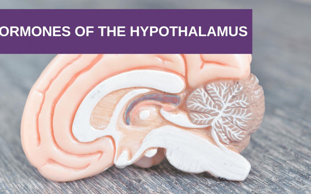 Hormones of the Hypothalamus