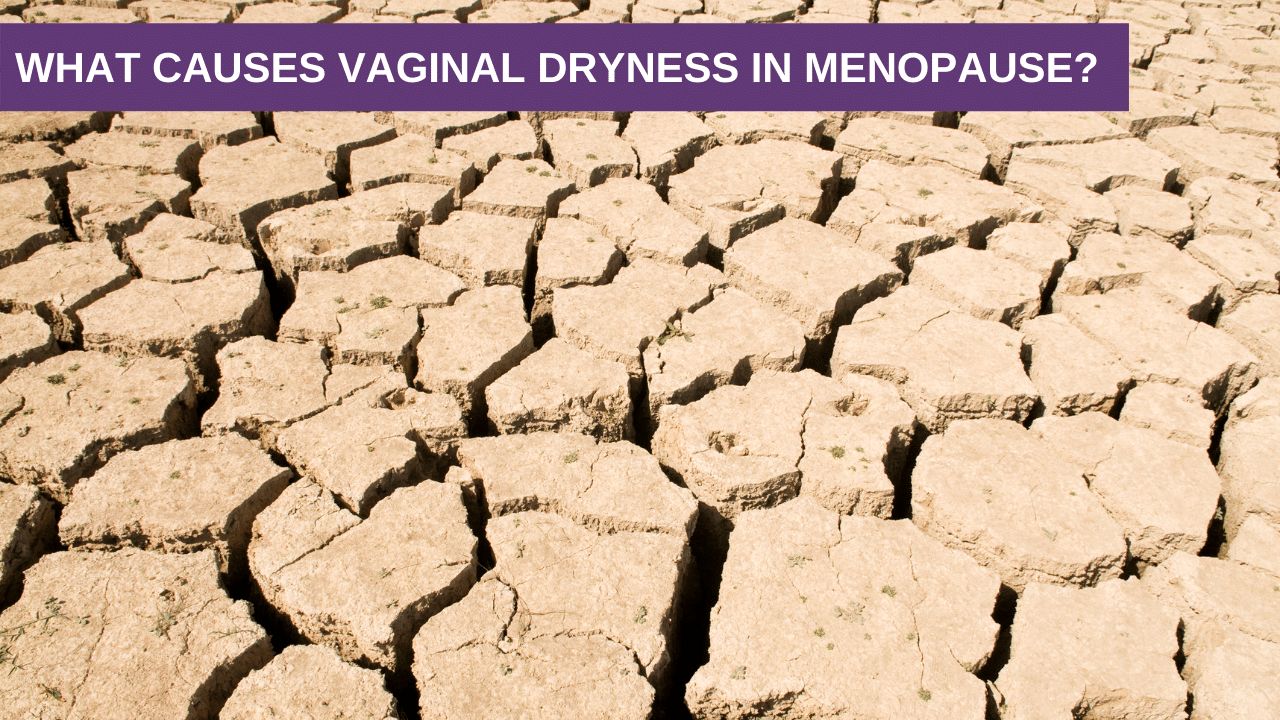 What Causes Vaginal Dryness in Menopause?